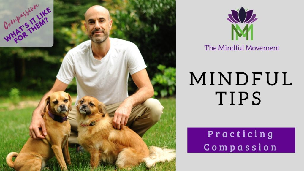 Mindful tip compassion