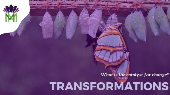 Catalyst for Transformation